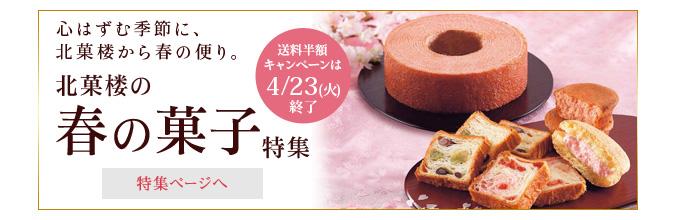 春の菓子特集